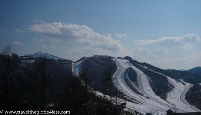 Alpensia skiing in Korea
