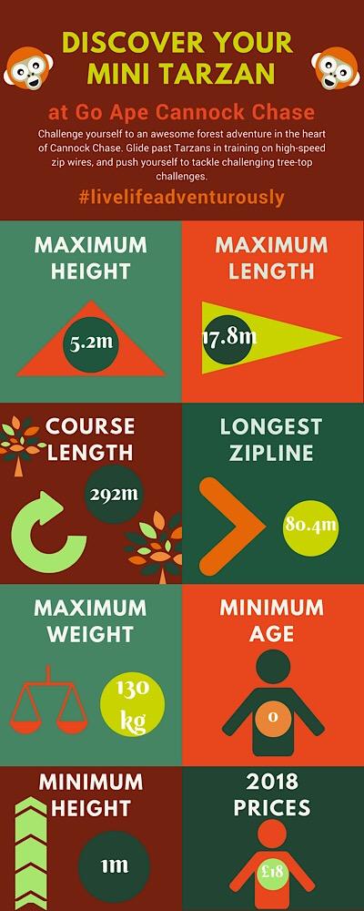 Go Ape junior infographic