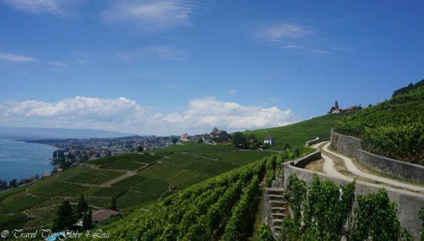The vineyards of Latraux
