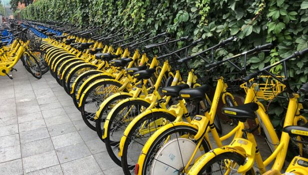 Ofo bicycles in Beijing