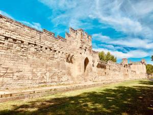 mura medievali Avignone 2019