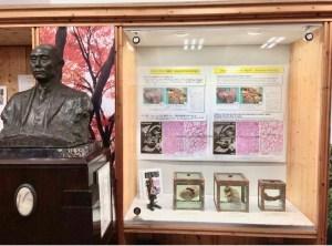 Organi Hachikouniversità ueno 8 marzo il mio viaggio in Giappone traveltherapists