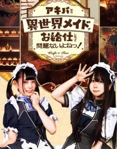 cameriere del granvania maid café Top Maid Café a Tokyo