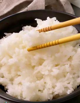 porzione di riso gohan tipica di un pasto in Giappone perché i giapponesi non ingrassano pasto giapponese il mio viaggio in giappone traveltherapists miglior blog di viaggio