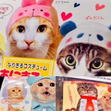sorprese gashapon a tema gatto il mio viaggio in giappone traveltherapists Snack e oggetti imperdibili dal Giappone