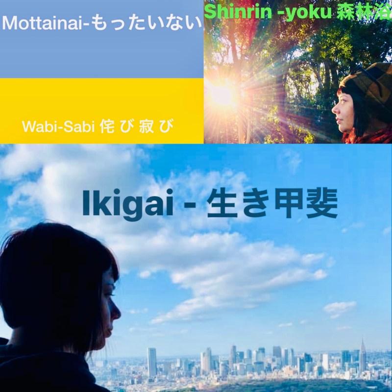 copertina parole giapponesi mottenai il mio viaggio in giappone traveltherapists blog giappone miglior blog di viaggio