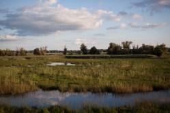 Nature park Kopacevo
