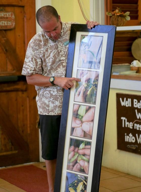 Vanilla Farm Tour Hawaii-7