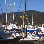 The success of local agriculture helped Cairns to establish itself as a PORT, and the creation of a harbour board in 1906 helped to support its economic future.