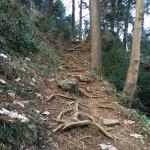 石老山の登山道