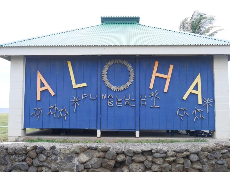 Hawaii aloha spirit usa travel blog voyage blogger états-unis amérique traveltotthemoonandback travel to the moon and back blog