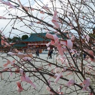 kyoto city travel kansai voyage blog traveltothemoonandback