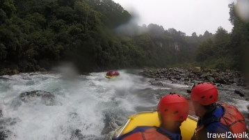 16_12_NZ2-100