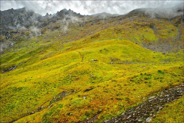 Meadows of Asurbag, Tirthan Valley, Great Himalayan National Park, Himachal Pradesh, India