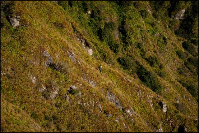 Approaching Kandi Galu notch, Jiva Nal Valley, Great Himalayan National Park, Himachal Pradesh, India