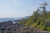 Wild Pacific Trail (8)