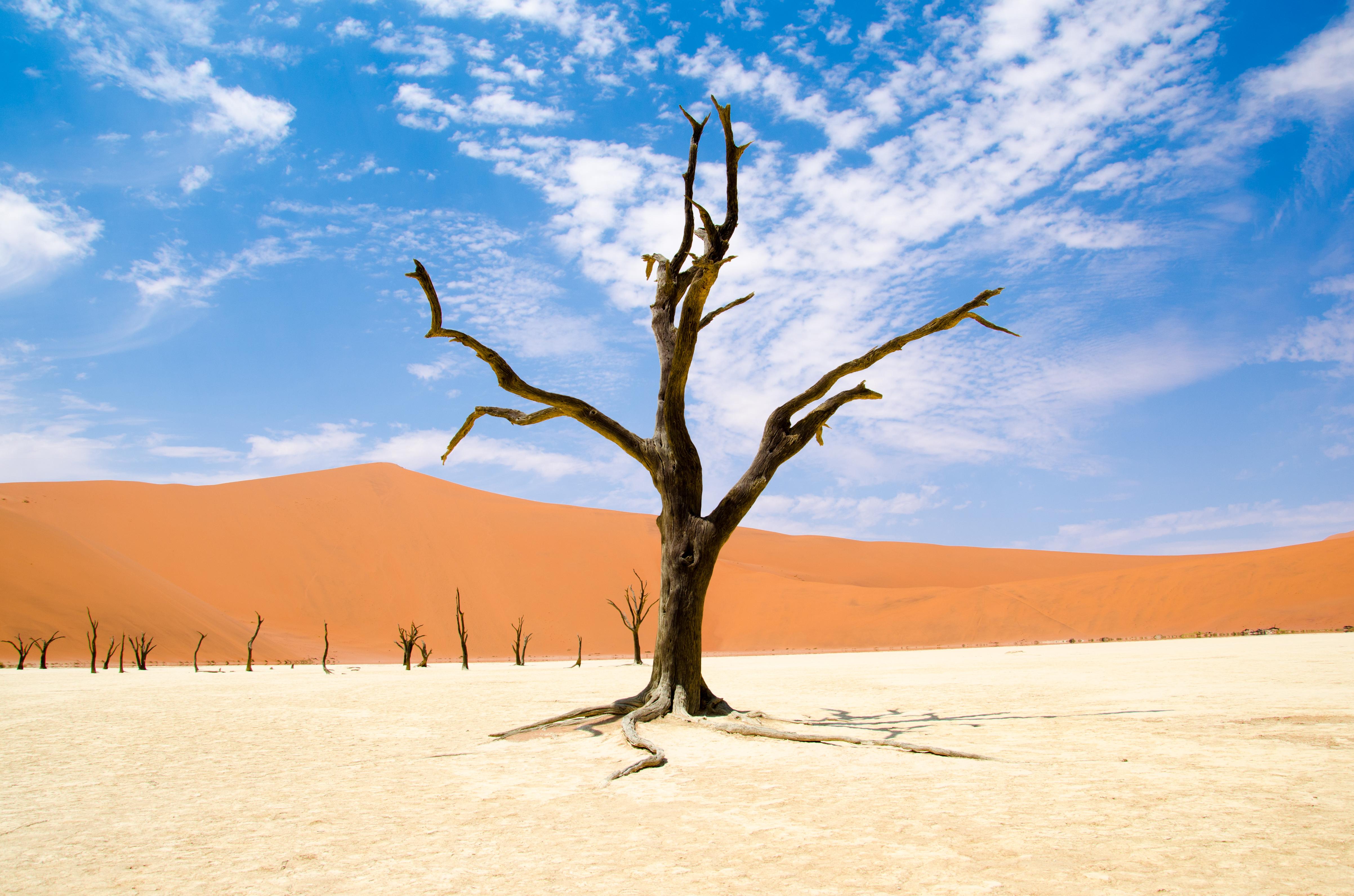 De rode duinen van Sossuvlei in Namibië