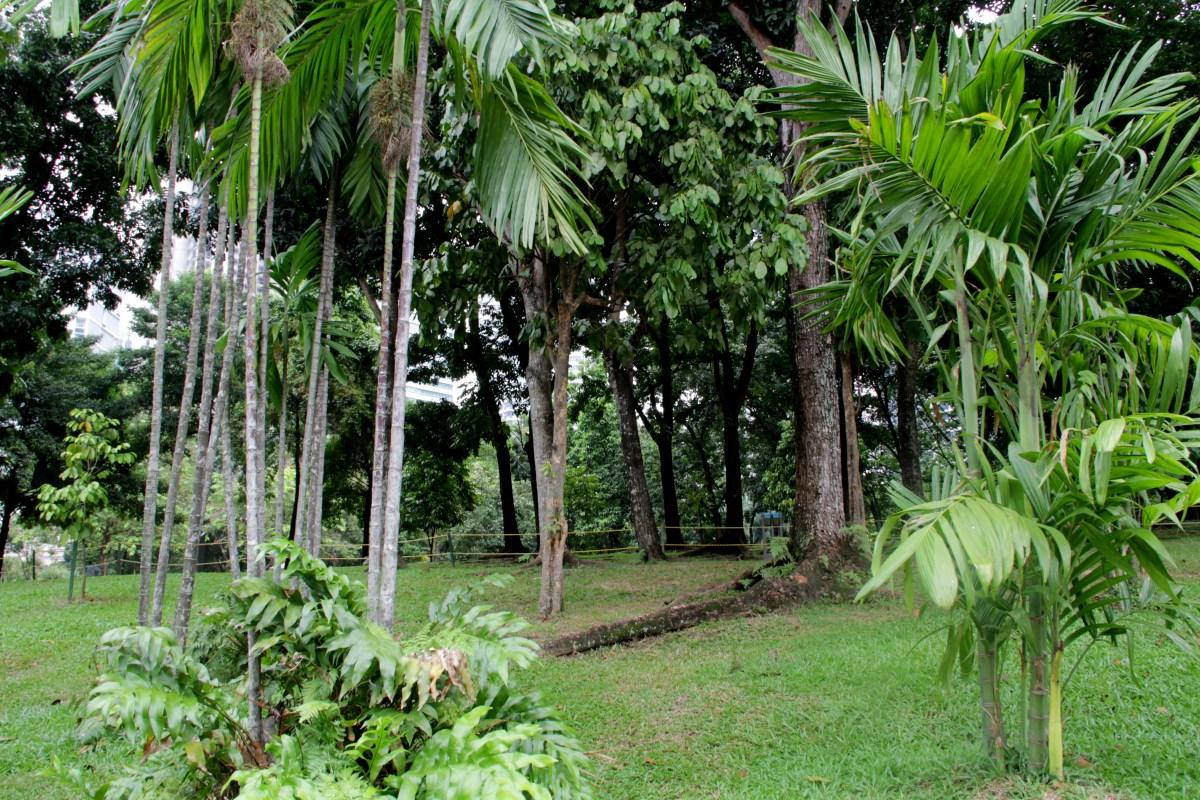 Park Kuala Lumpur