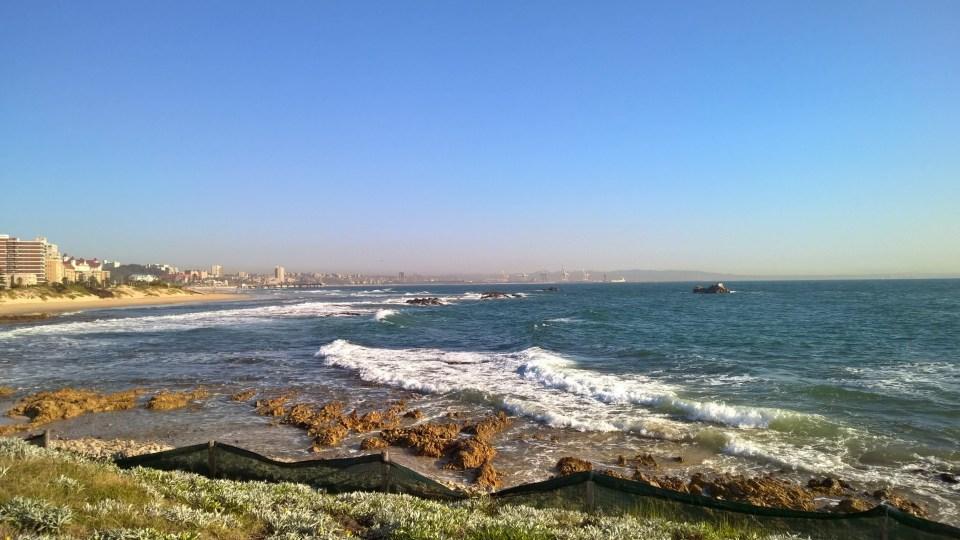 Beautiful views of Port Elizabeth