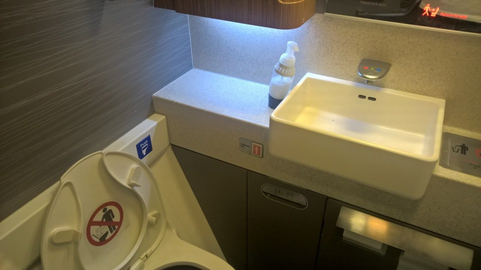 American Airlines Business Class Lavatory