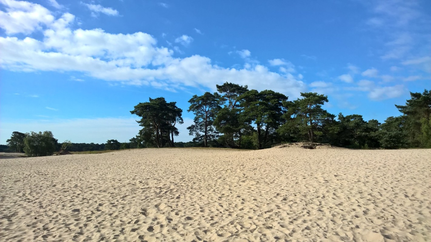 Running in Soestduinen