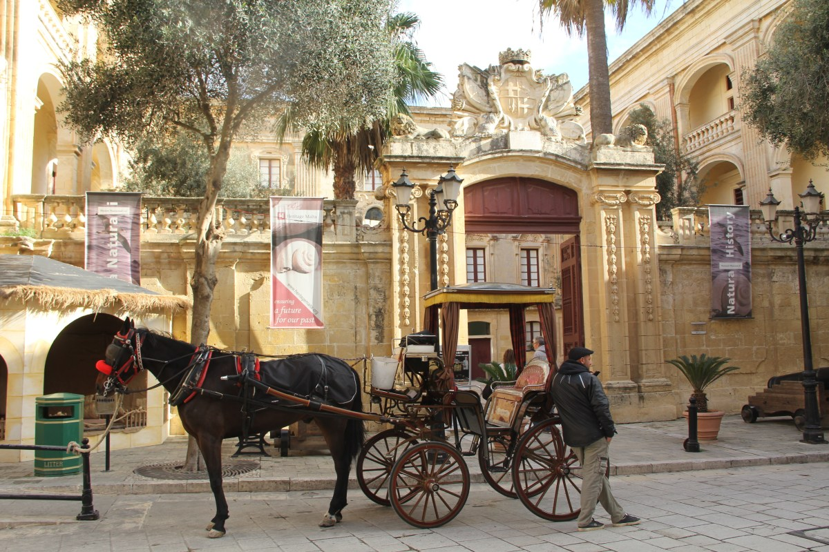 Mdina National Museum of Natural History