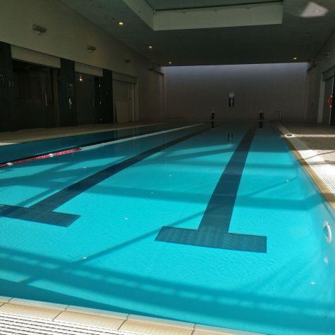 Pullman Auckland Pool