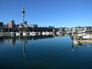 Running in Auckland