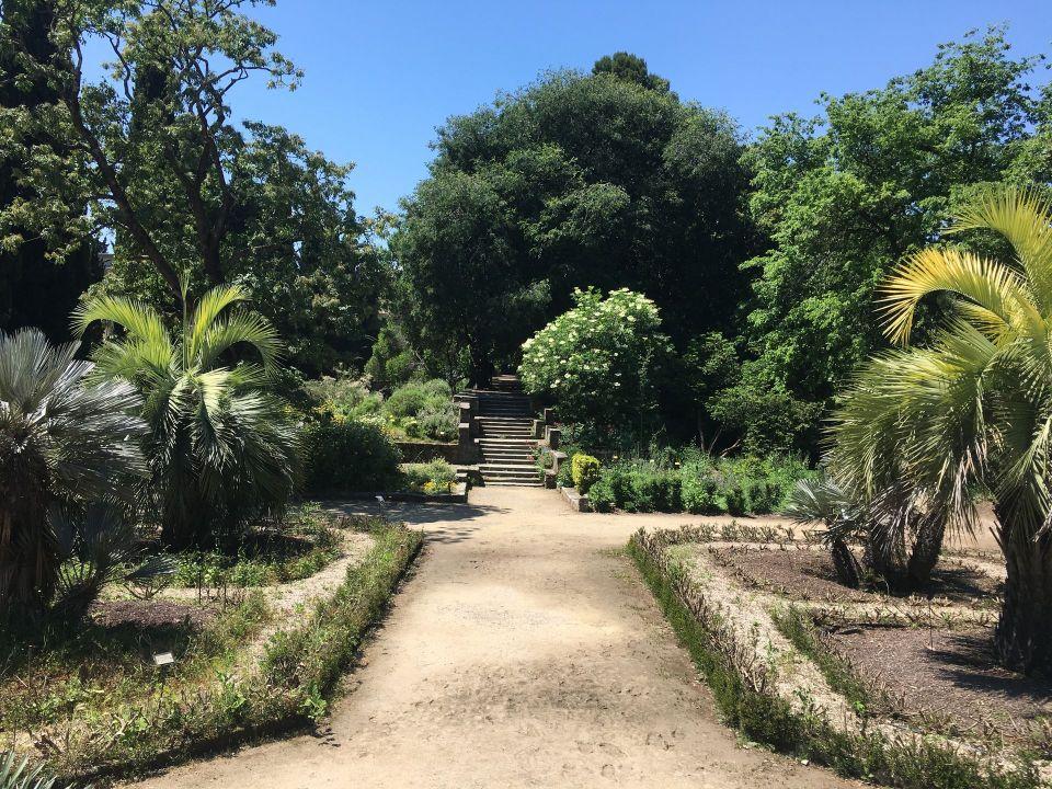 Botanical Garden Montpellier