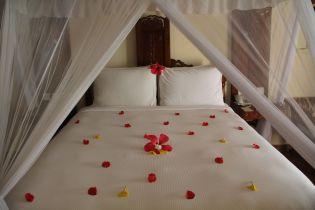DoubleTree Resort Zanzibar Nungwi Ocean View Room