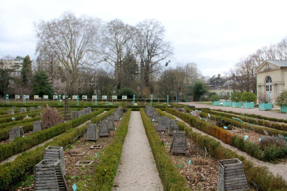 Jardin Botanique de l'Arquebuse Dijon