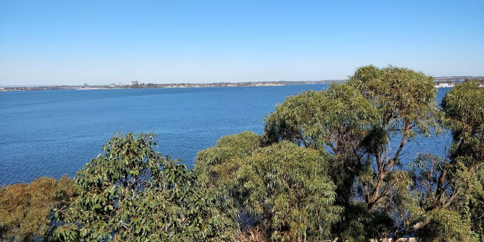 Kings Park and Botanic Garden Perth Law Walk
