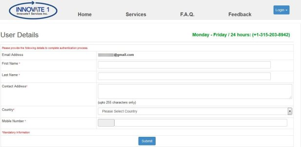 nigeria visa on arrival application page
