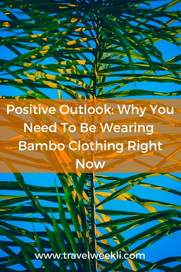 Positive Outlook: Why You Need To Be Wearing Bambo Clothing Right Now