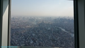 tokyo-skytree-direction-tower-fuji