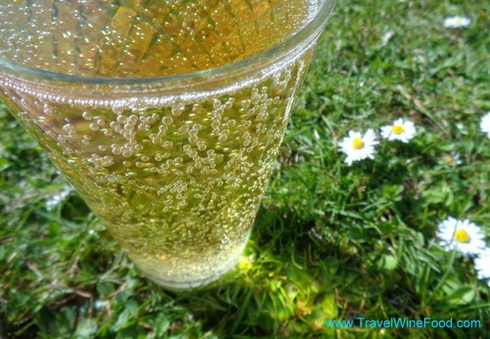A glass of apfelwein on the grass