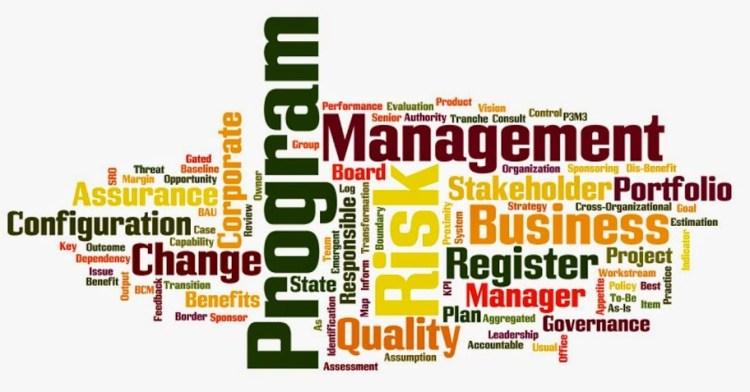 Program Managment Terminology