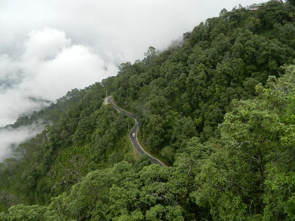 A view of Lansdowne roads and forests, Uttarakhand, India