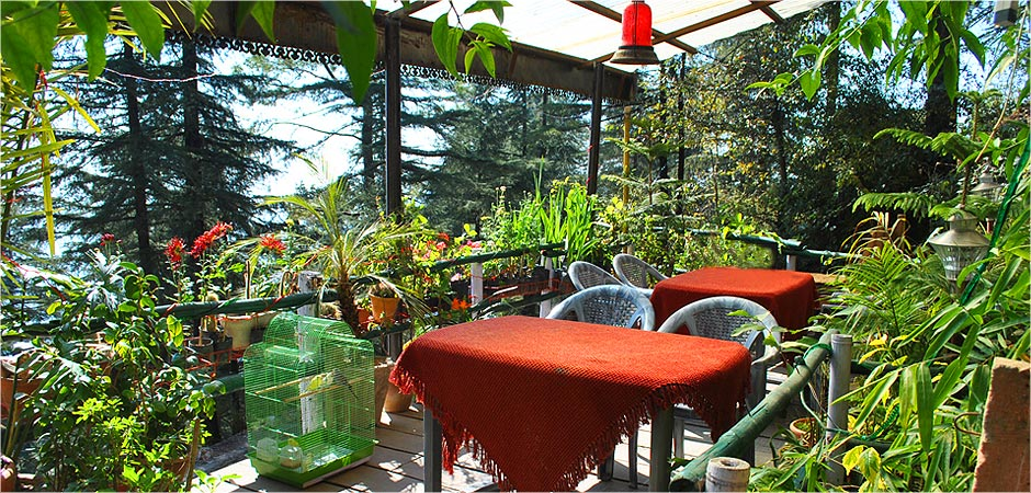 Mcleodgang Homestay, Mcleodgang, India
