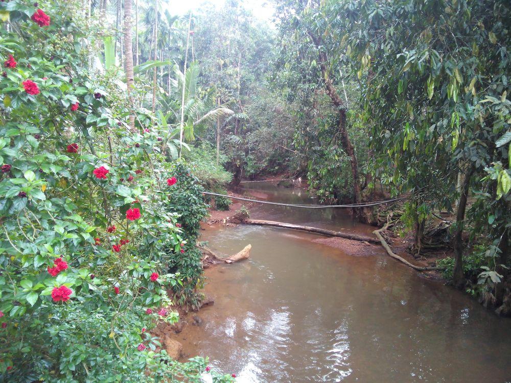 Spice Garden, Goa, India