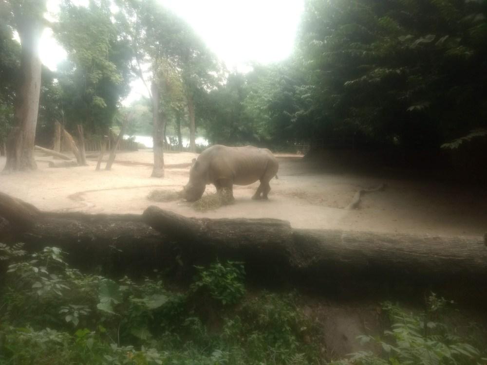 Singapore Zoo, Singapore