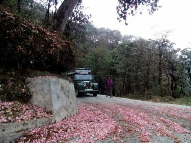 Sandakphu by Land Rover