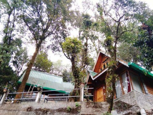 Pinewood Log Huts Kurseong