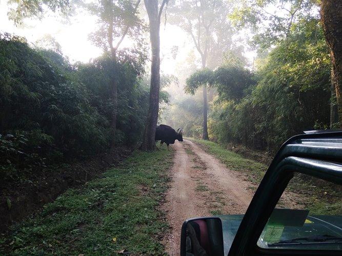 madhya pradesh tour from kolkata