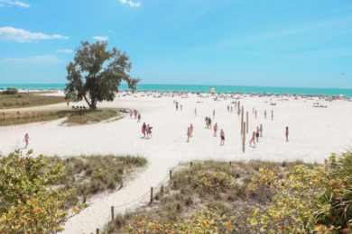 Things to do in Siesta Key cover