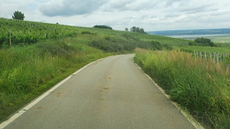 In drum spre cramele de la Drăgășani și turismul viticol din România