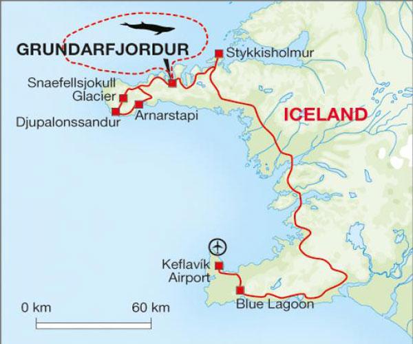 Northern Lights Boat Iceland