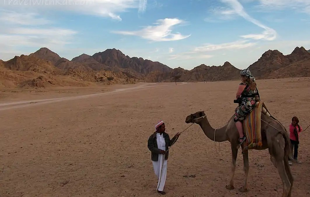 A camel ride into the Sinai Desert