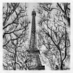 Instagramming Paris