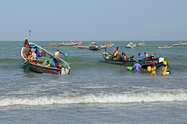 Top Ten things to do in The Gambia, Tanji